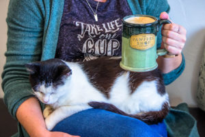 A Cat with a Mug at Pawffee Shop Cat Cafe in Appleton